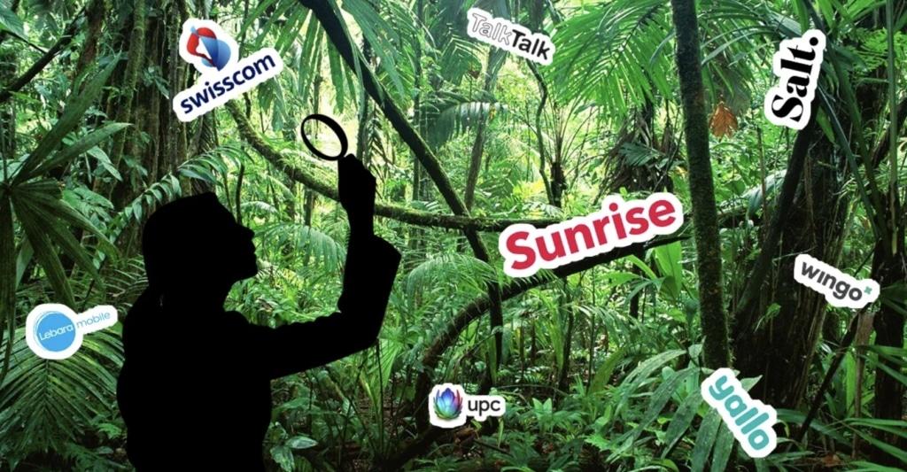 Mobilfunkanbieter Dschungel